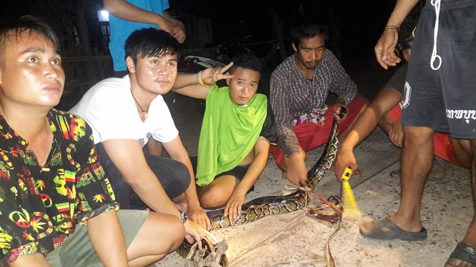 The men pose with the snake they caught