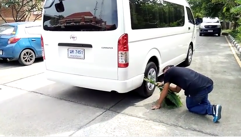 A man tries to poke out the monitor lizard from the van