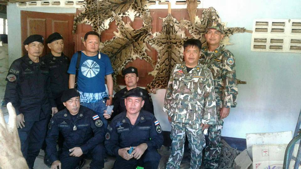 Police pose with the tiger skins the teenage girl was selling on Facebook