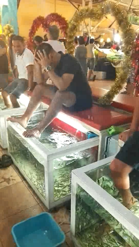 tourist funny reaction to fish spa in phuket
