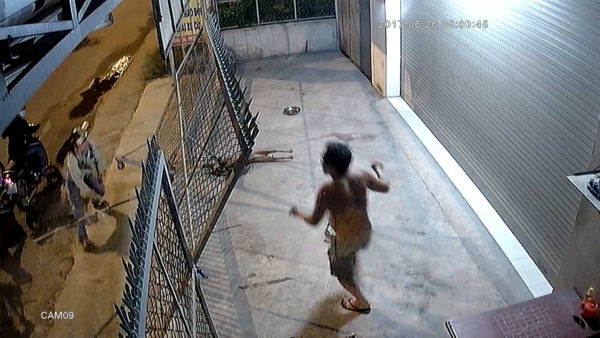 This is the sickening moment thieves kill three family dogs with HARPOONS and a SPEAR to steal them to EAT in Vietnam