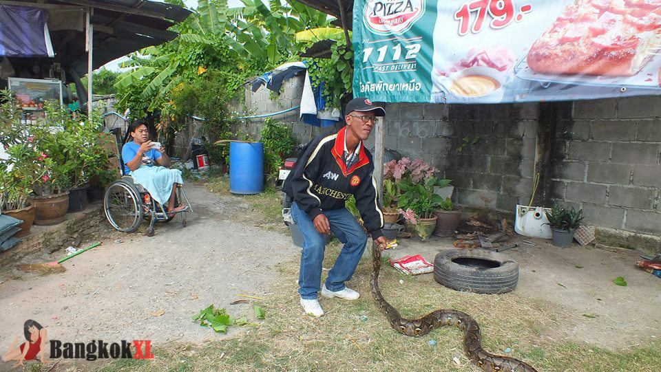 The snake sparked panic after it was seen coiled inside the rubber wheel outside a restaurant in Pattaya